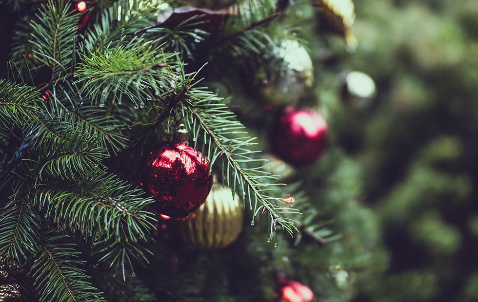 Amazon will sell 7ft live Christmas trees in the US this year