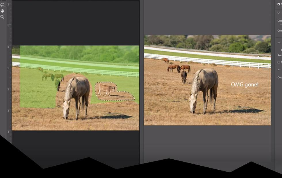 This Photoshop CC update is radical, and I can't wait
