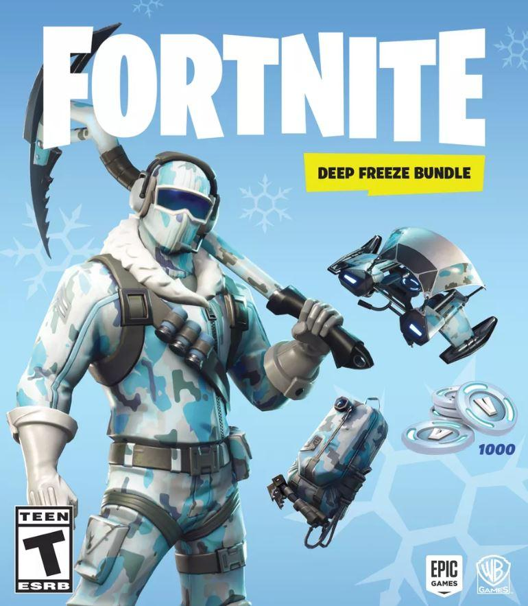 as with most of these other skin bundles including the double helix switch bundle the deep freeze bundle also offer 1 000 v bucks to use as you wish - winter fortnite skins