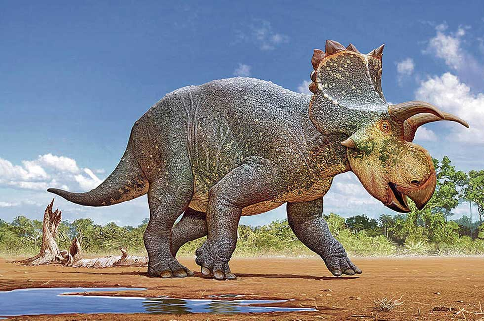Scientists from New Mexico discover and name new dinosaur