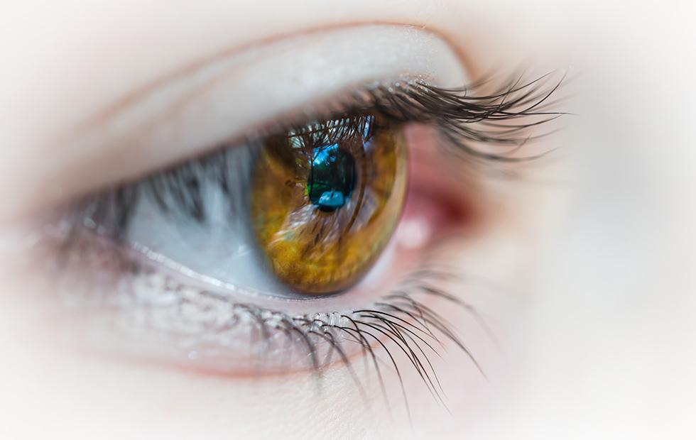 Study warns CBD may increase eye pressure in glaucoma patients