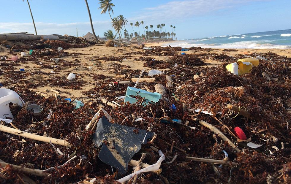 Study finds Texas coast has more plastic trash than other Gulf states