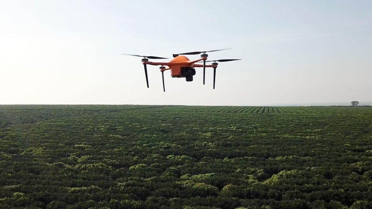 AI and drones give farmers an edge as SeeTree takes off