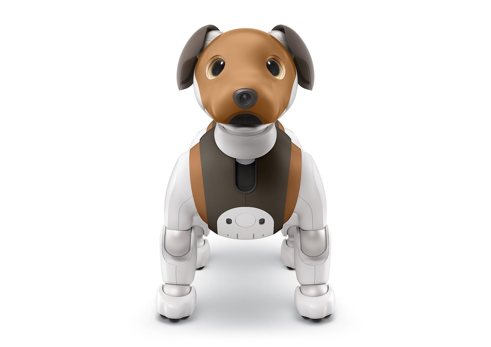 Sony aibo chocolate edition arrives as robot pup turns guard