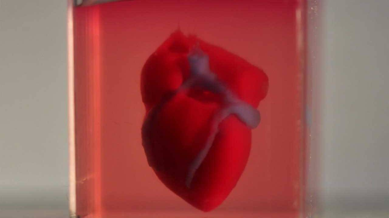 Researchers 3D print first human heart with patient's own biomaterial