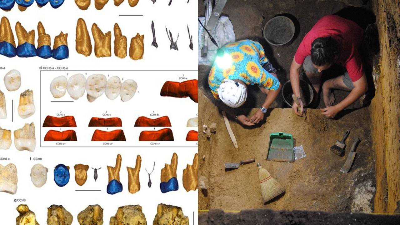 More hobbit-like hominids found in Philippine cave