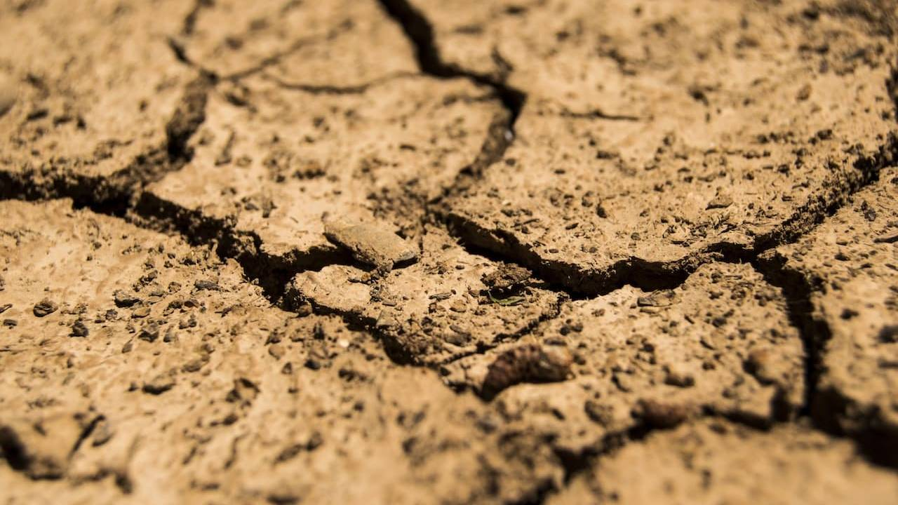 We're to blame for Earth's droughts – and it's only getting worse