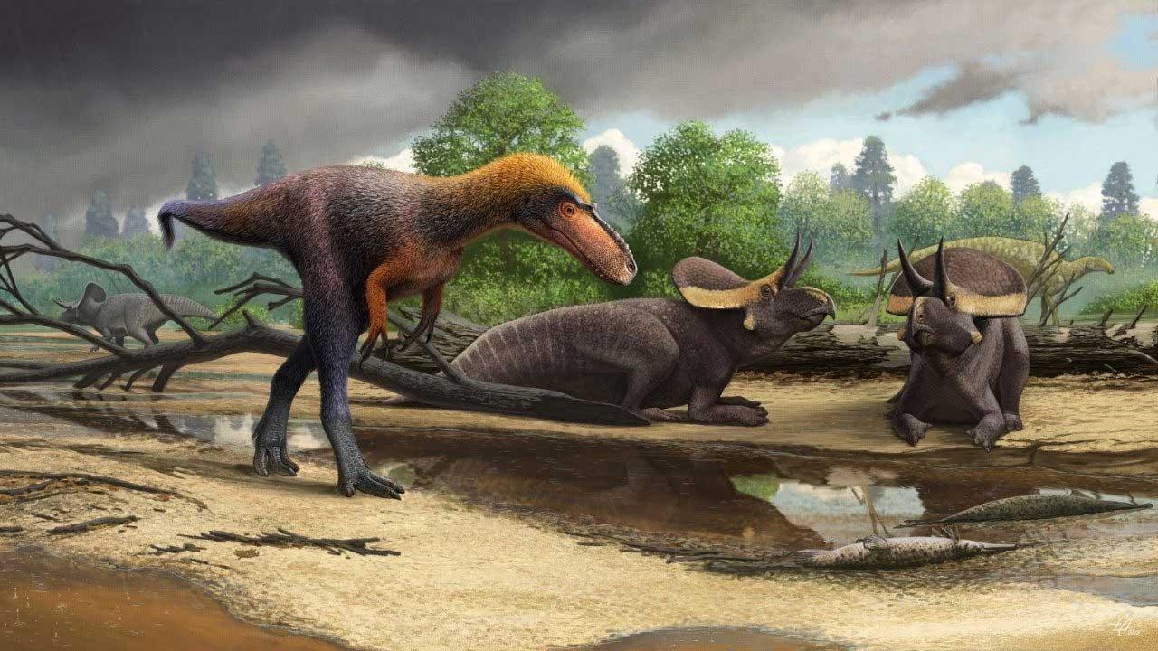 Paleontologist discover new T-rex relative and dub it Suskityrannus