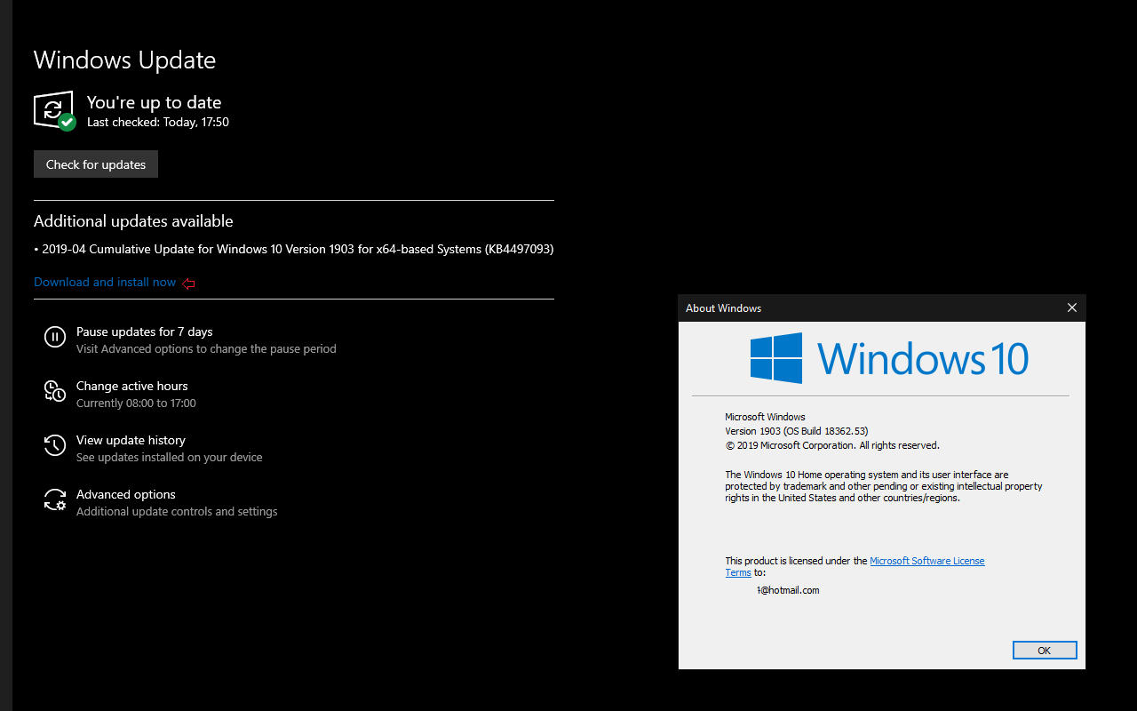 Windows 10 1903 to let users decide when to download and