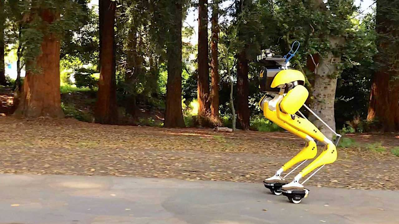 Cassie Cal robot can ride hovershoes