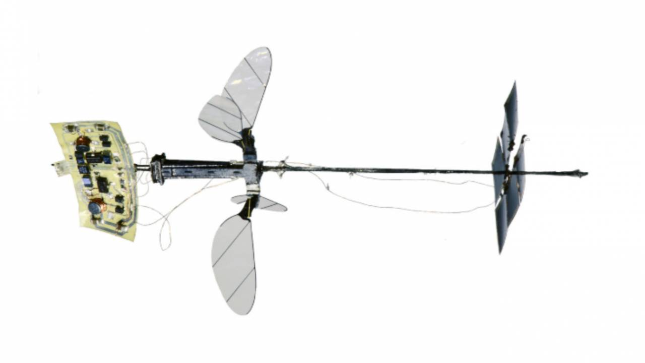 Harvard's insect-like RoboBee achieves major solo flight milestone