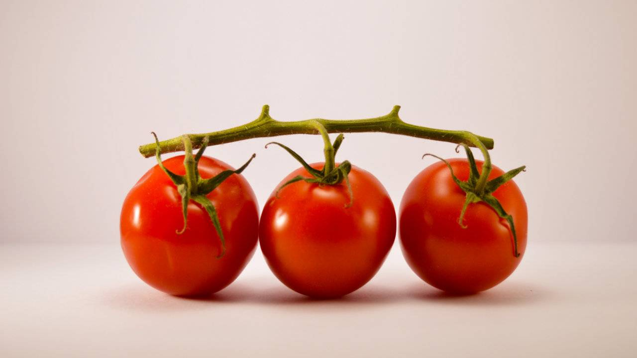Drinking unsalted tomato juice has surprising impact on cholesterol