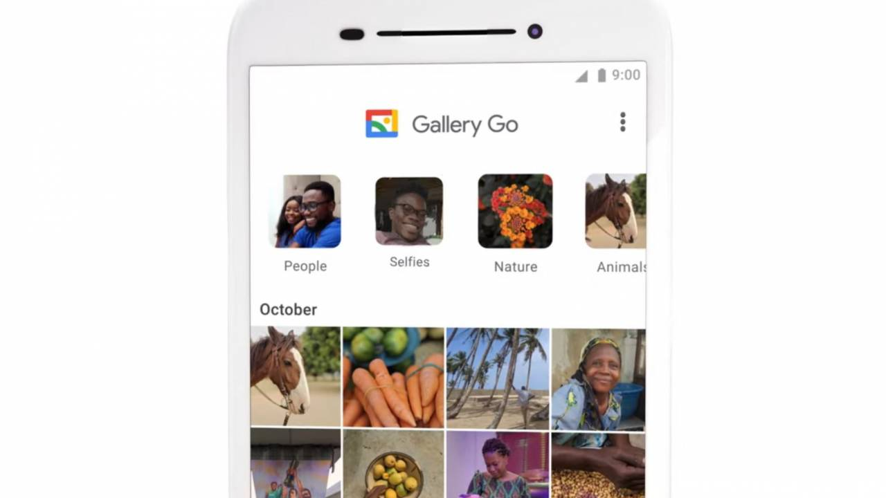 Gallery Go takes Google's photo management tools offline