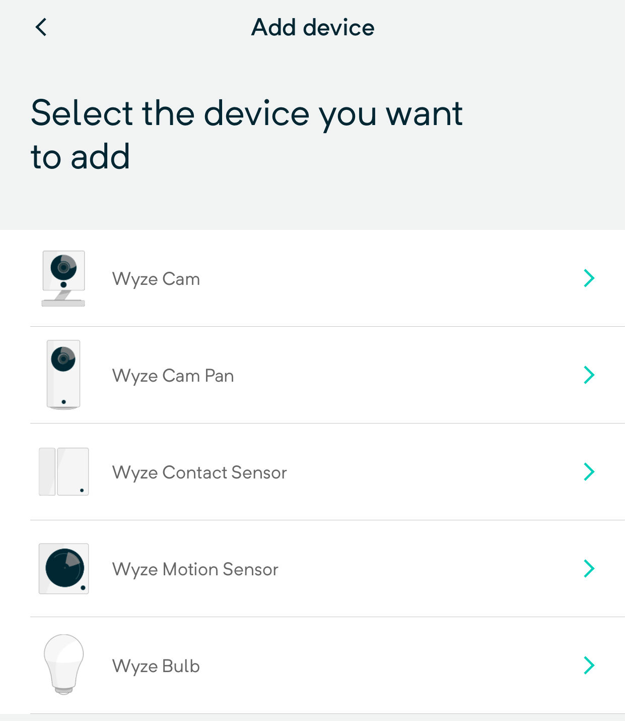 Wyze Cam Cannot Connect To Local Network