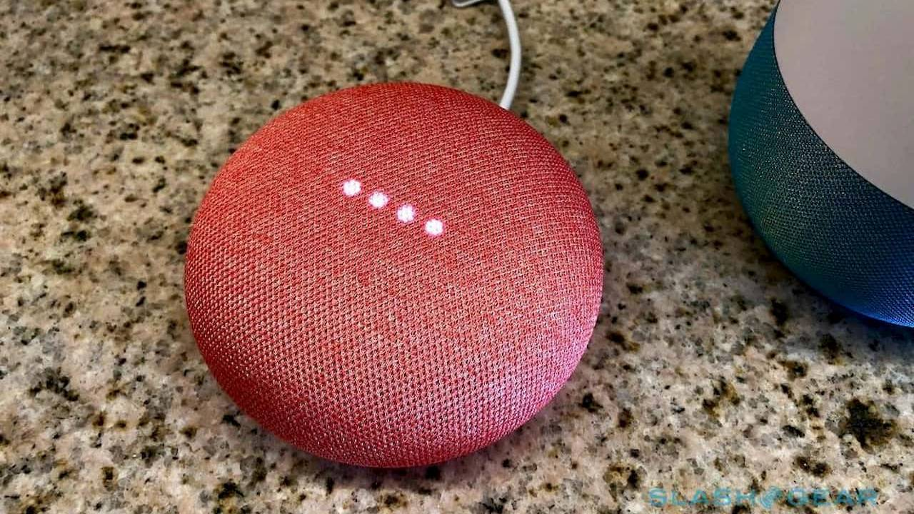 Google Nest sending 100k Home Minis to people with paralysis