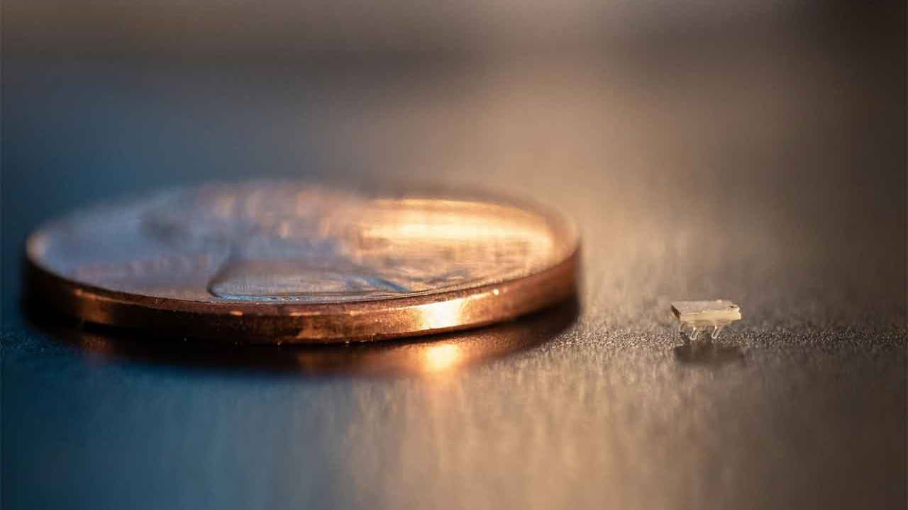 Tiny 3D printed robots are nearly invisible