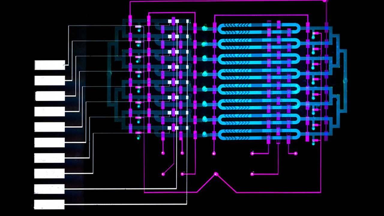 MIT microfluidics device helps diagnose sepsis faster