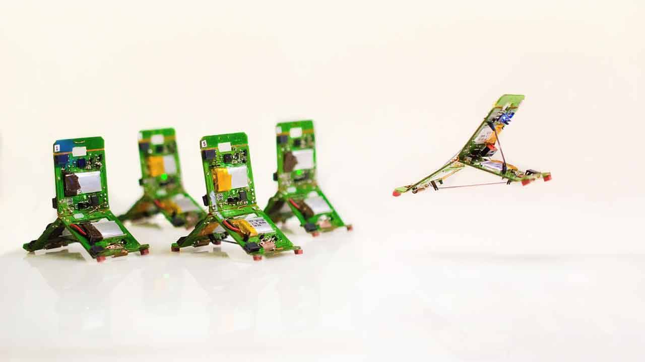 Tiny robots work together to complete complex tasks