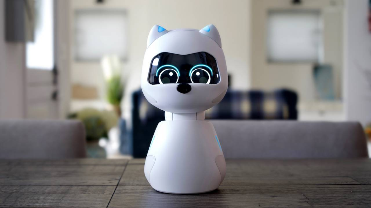 This robot cat Kiki thinks learning AI can win where other home robots failed