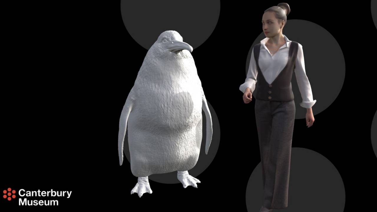 "This human-sized ""monster"" penguin is massively adorable"