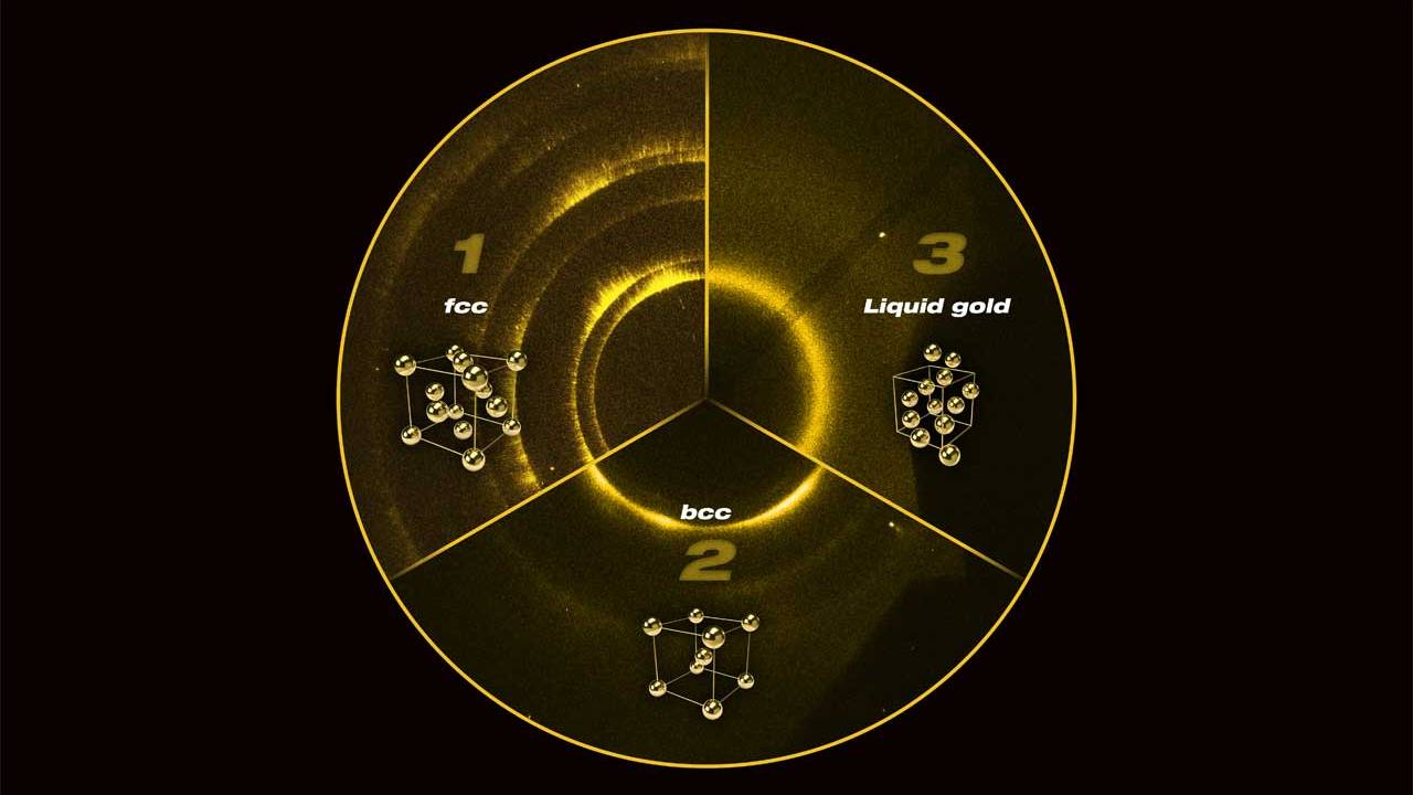 New Structures of gold discovered at extreme pressures
