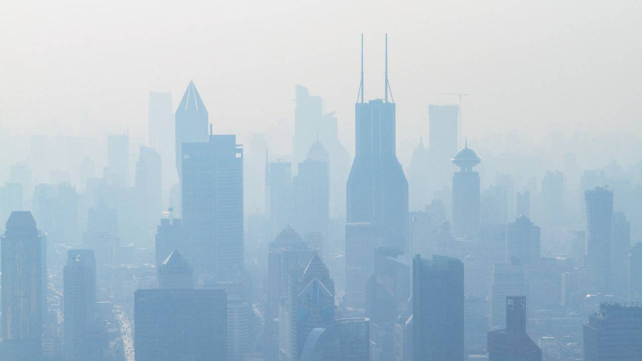 Air pollution in childhood linked to schizophrenia, personality disorders