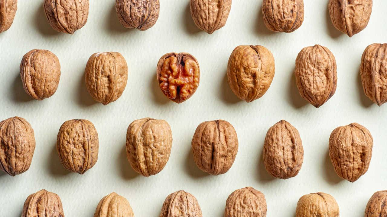 Walnut study hints at powerful protection against IBD damage