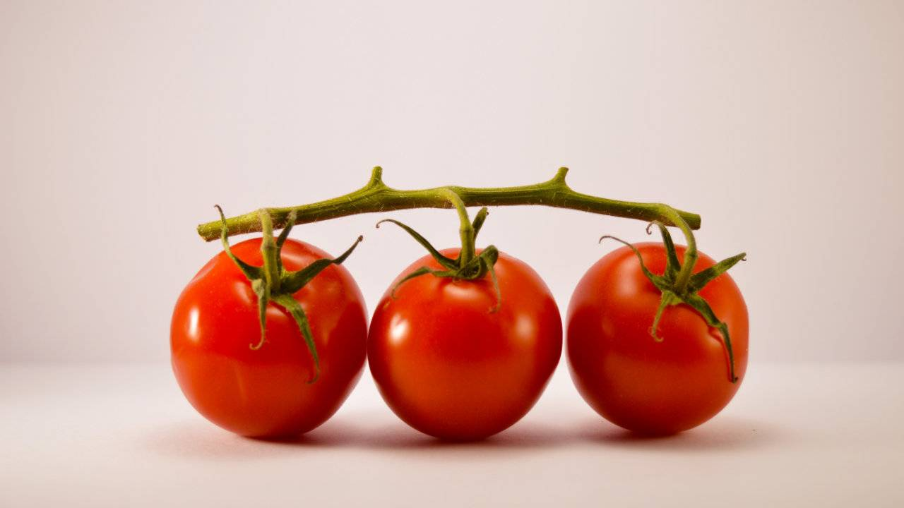 Many common foods ruin the anti-cancer effect of tomatoes