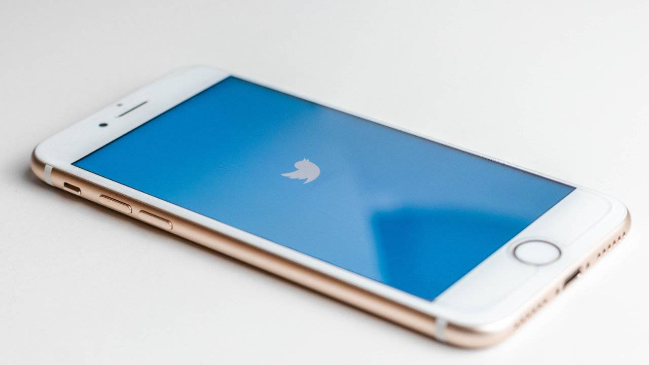 Twitter targets financial scams with its latest policy update