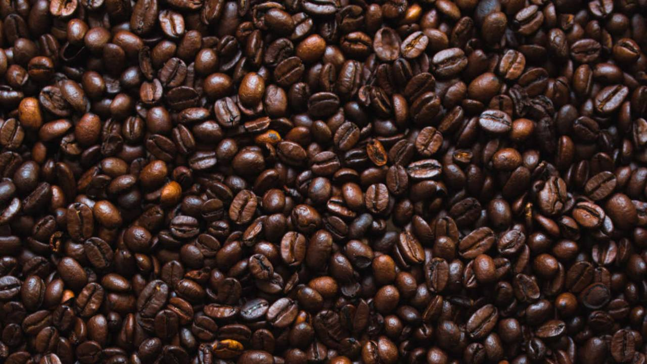 Two coffee compounds may prevent many obesity-related issues