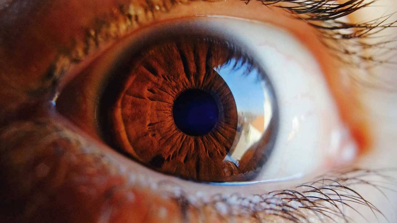 A major hurdle to an artificial retina has been solved