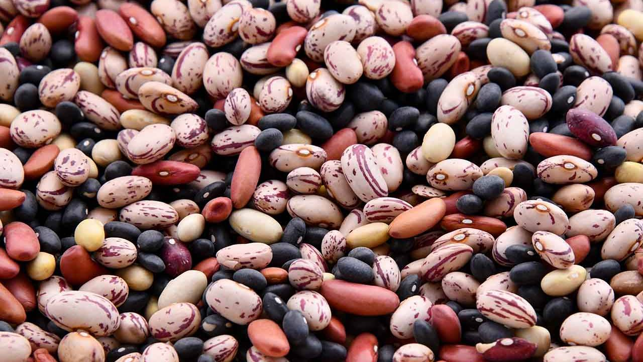 Americans aren't eating enough beans, putting heart health at risk