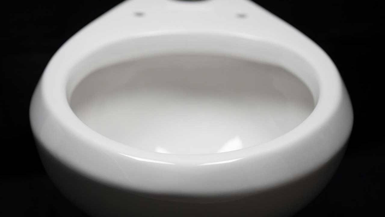 New toilet coating could provide cleaner flushing