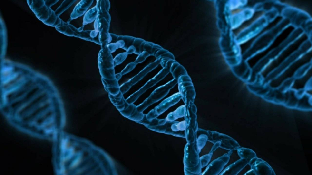 Leaked Pentagon memo warns military about the risk of DNA kits