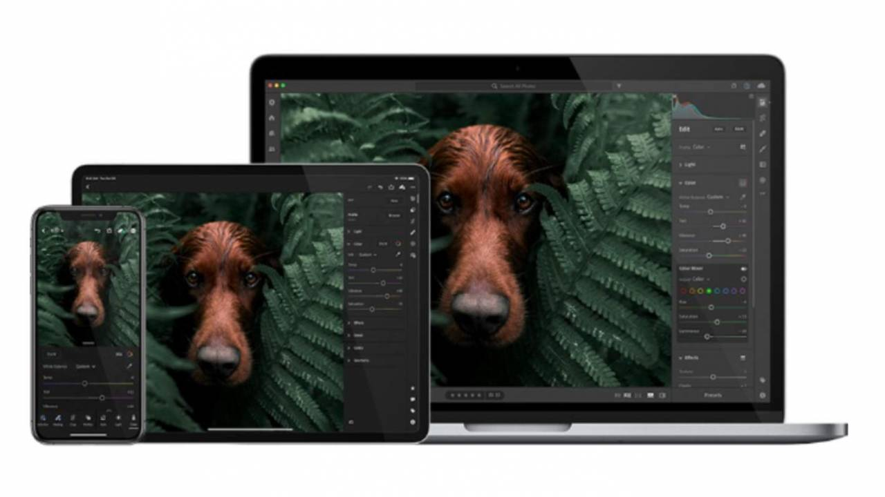 Adobe Lightroom for iOS gets direct import and advanced export features