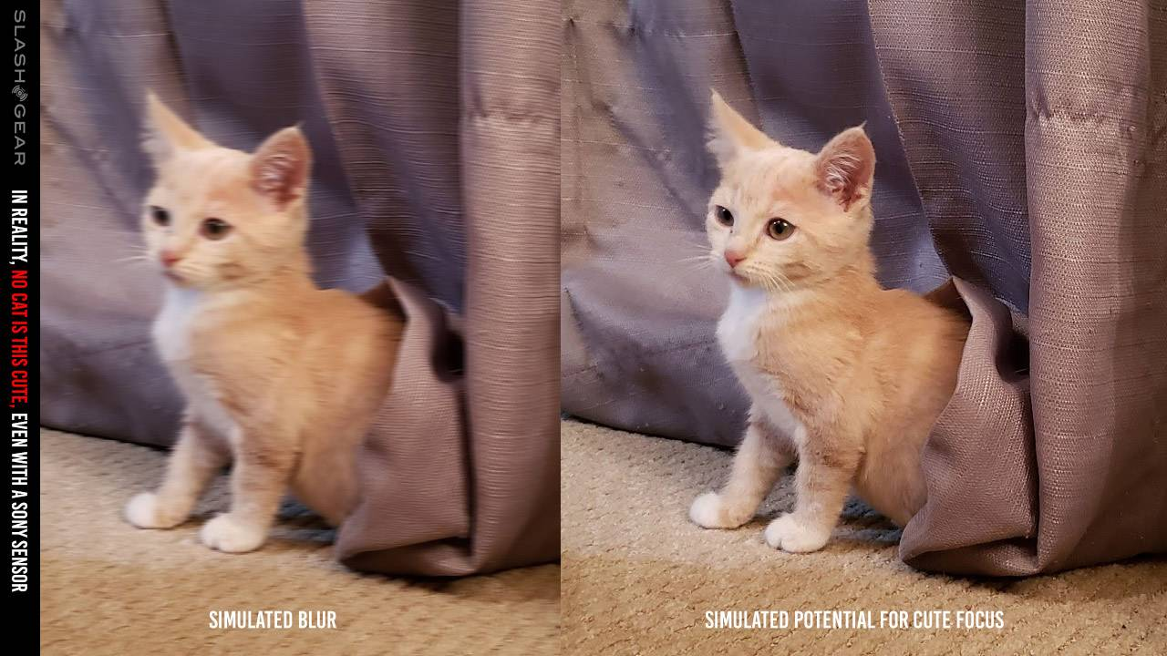 Sony 2×2 OCL: Why future cat photos are less blurry