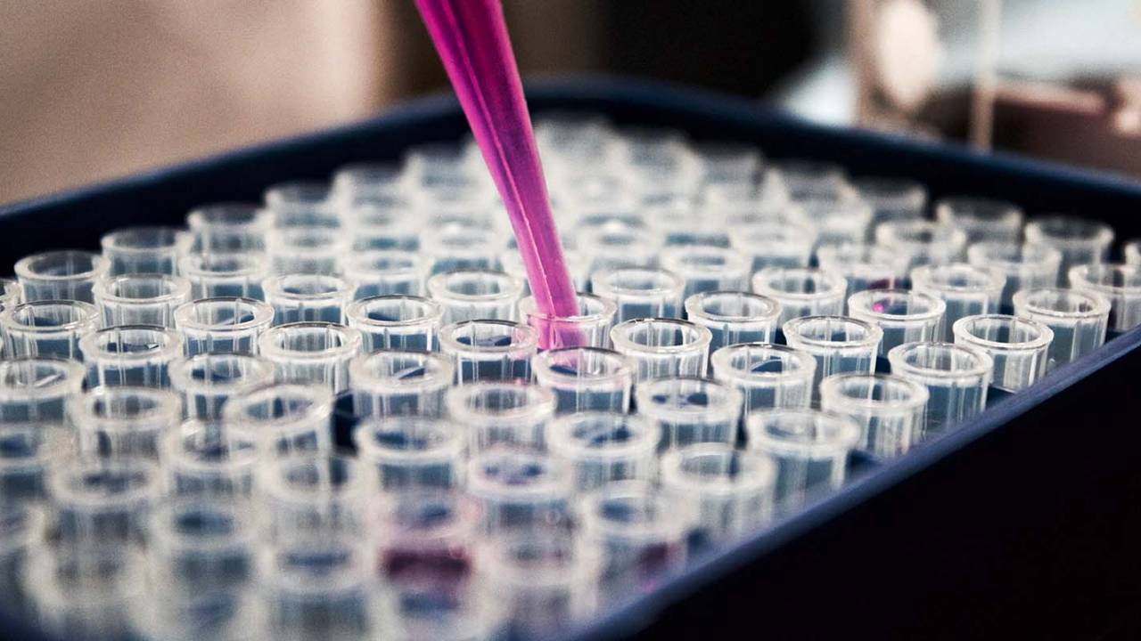 Scientists find compound that may reverse aging fertility in women