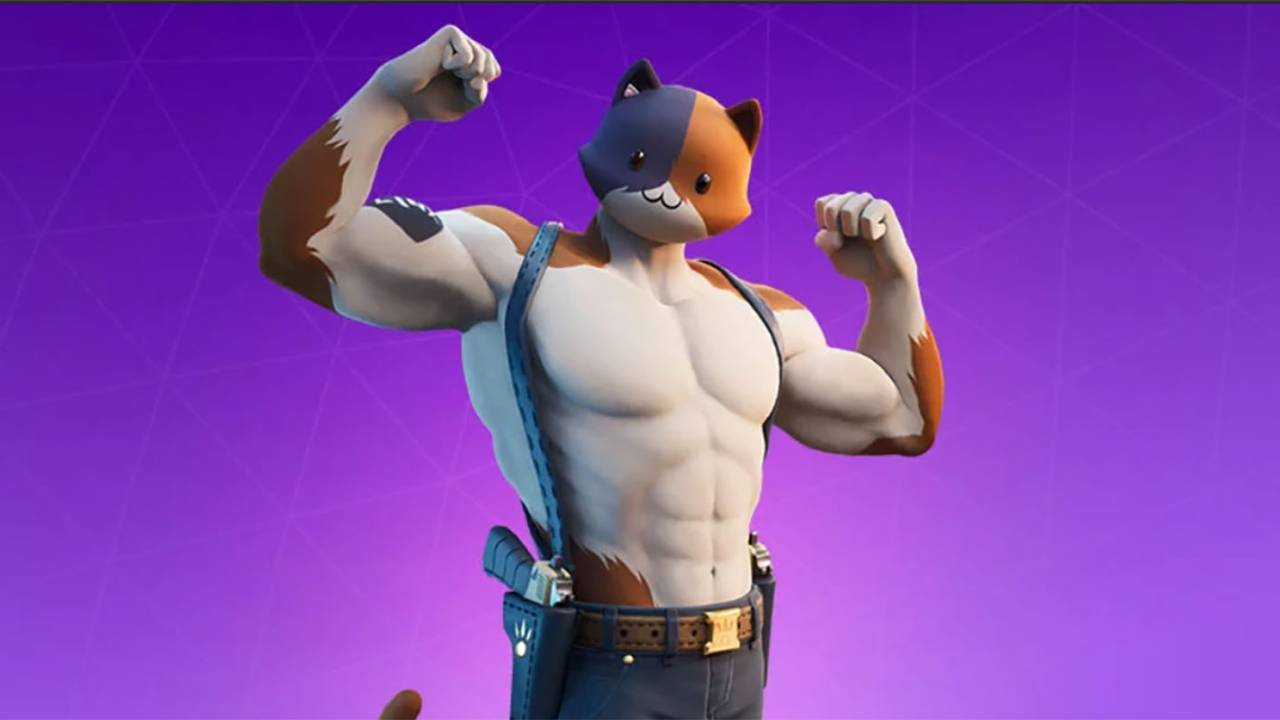 Fortnite fans are cosplaying as Meowscles using real cats