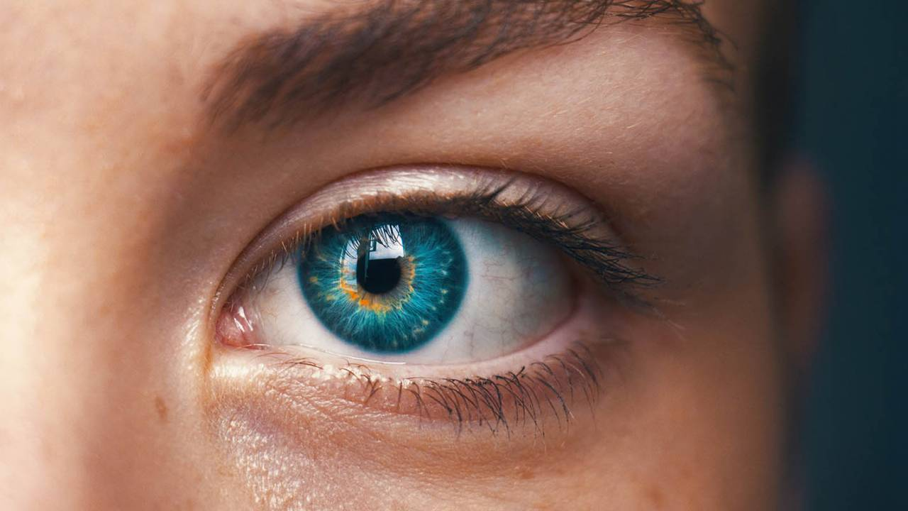 Biomimetic eye prototype brings cyborgs closer to reality