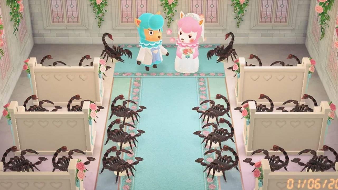 Animal Crossing wedding event photos get weird