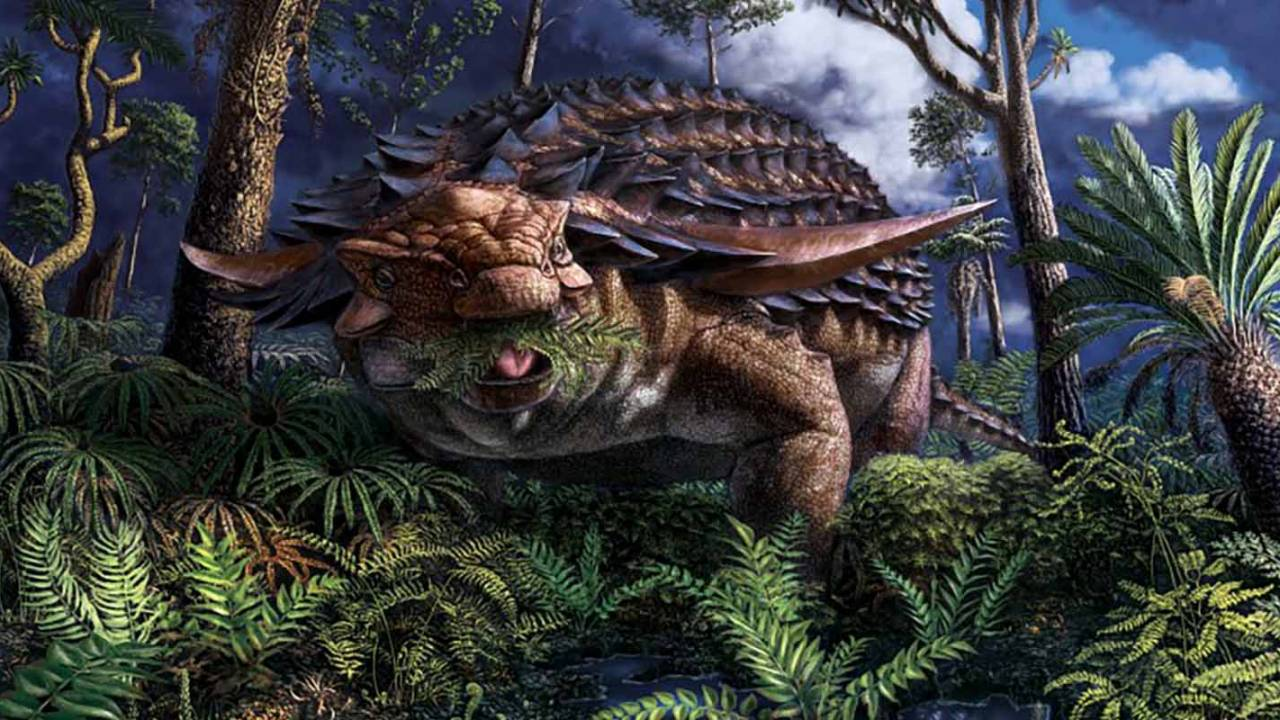 Nodosaur's 'exquisitely' preserved stomach contents reveal last meal