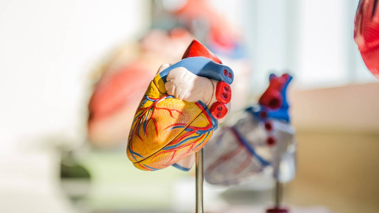 Study finds most recovered COVID-19 patients have heart issues