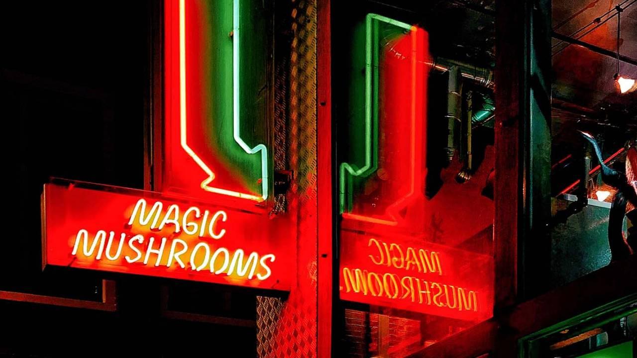 Magic mushroom compound psilocybin may help treat OCD, too