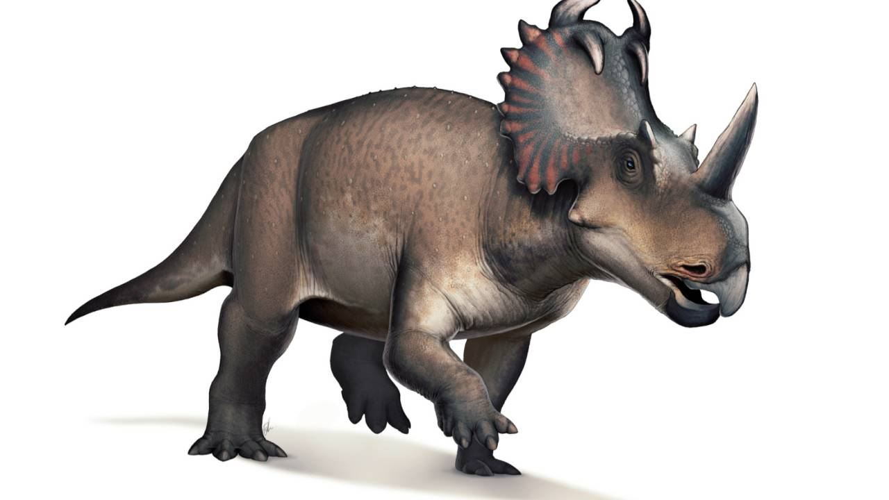 76 million year old dinosaur cancer could change modern treatment