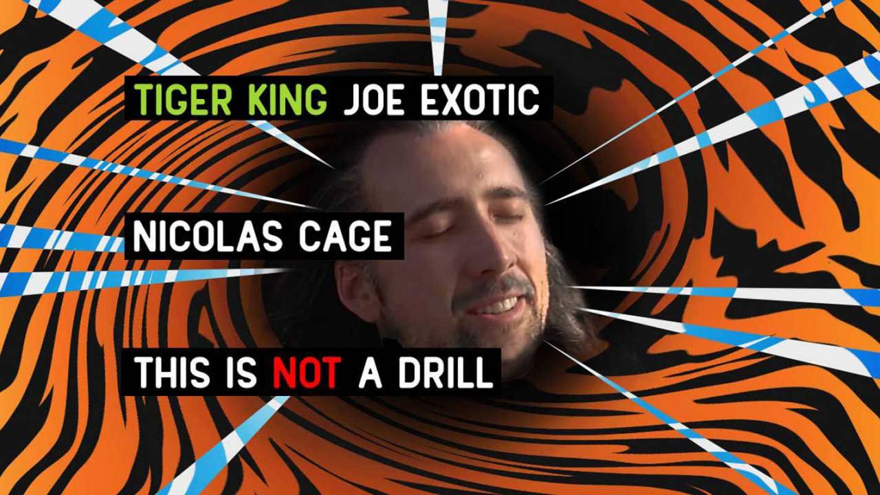 Amazon Studios officially nabs Joe Exotic TV show starring Nicolas Cage