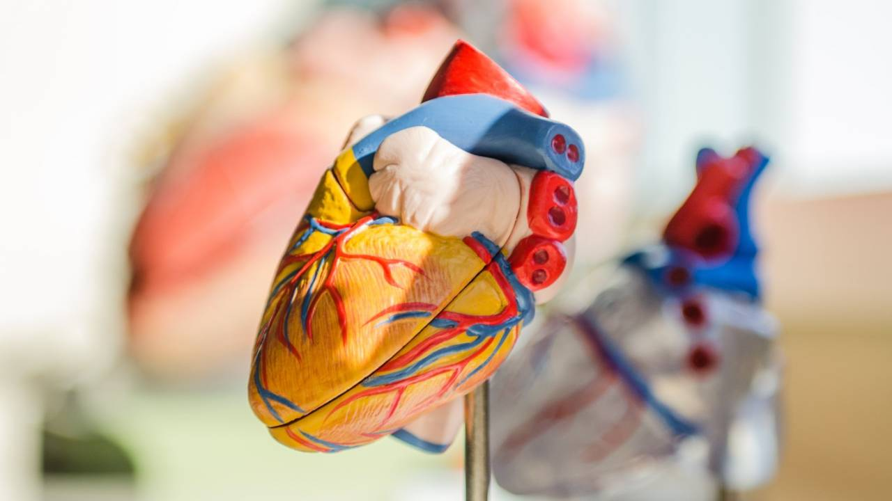 Study links keto diet and fasting with major impact on heart failure