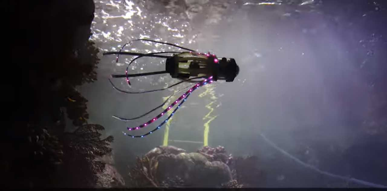 Squidbot moves like a real squid to take pictures of coral and fish