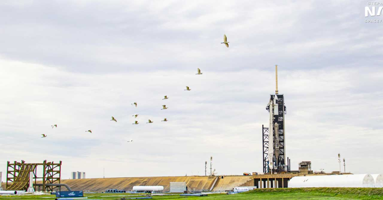 Cargo Dragon 2 launch scrubbed due to bad weather