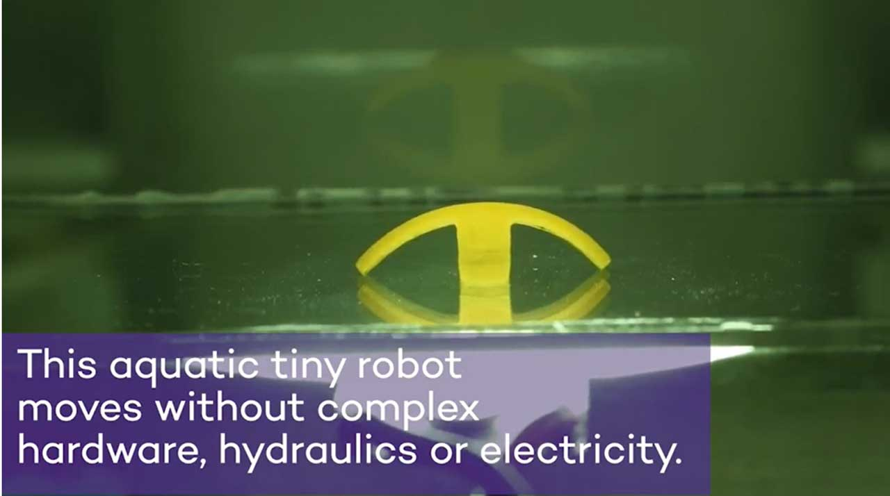 Northwestern University soft robot moves without hardware or electricity