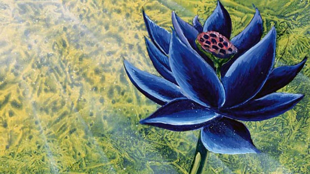A Magic: The Gathering Black Lotus just sold for a truly ridiculous amount of money